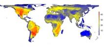 Así sería la distribución de grandes mamíferos (con un peso mayor de 45 kg.) de no existir el ser humano. Imagen: Soren Faurby.