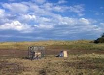 El sistema de 'falseo' del campo magnético, en la costa Báltica. Imagen: Dominik Heyers. Fuente: Cell Press.