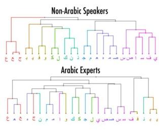 Los dos grupos (expertos y no expertos) veían las letras de forma bastante diferente. Imagen: Robert W. Wiley. Fuente: Universidad Johns Hopkins.