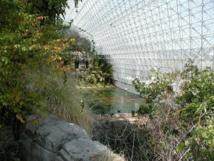 Biosphere2 por dentro. La vista corresponde a la sabana (en primer plano) y el océano (al fondo). Fuente: Wikipedia.