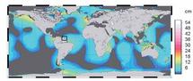Mapa del impacto de las mareas en el nivel oceánico a nivel mundial.  Adaptación del trabajo de B. Simon. IRD. (Pinchar para ampliar)