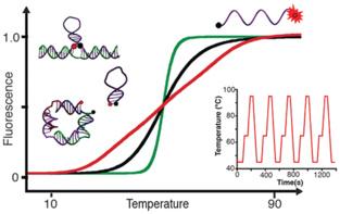 Comportamiento del ADN según la temperatura. Fuente: Nano Letters.