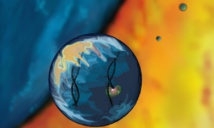 Visualización de ARN en gotas de agua. Imagen: J. Ellefson. Fuente: Universidad de Texas.