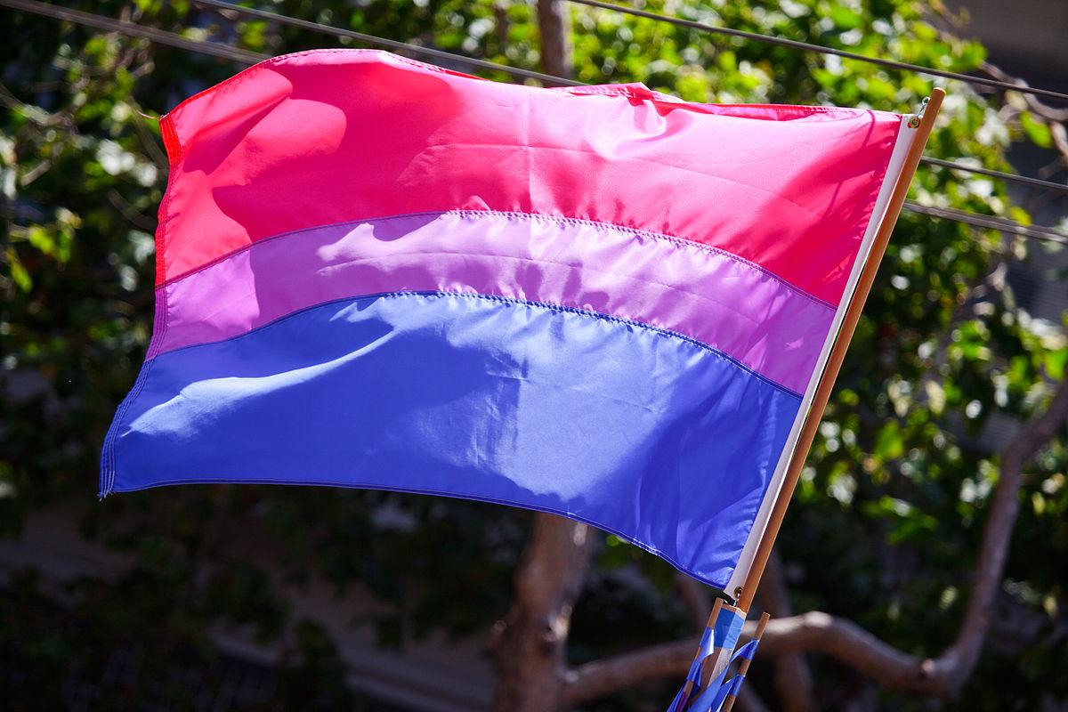 Bandera bisexual. Foto: Peter Salanki.