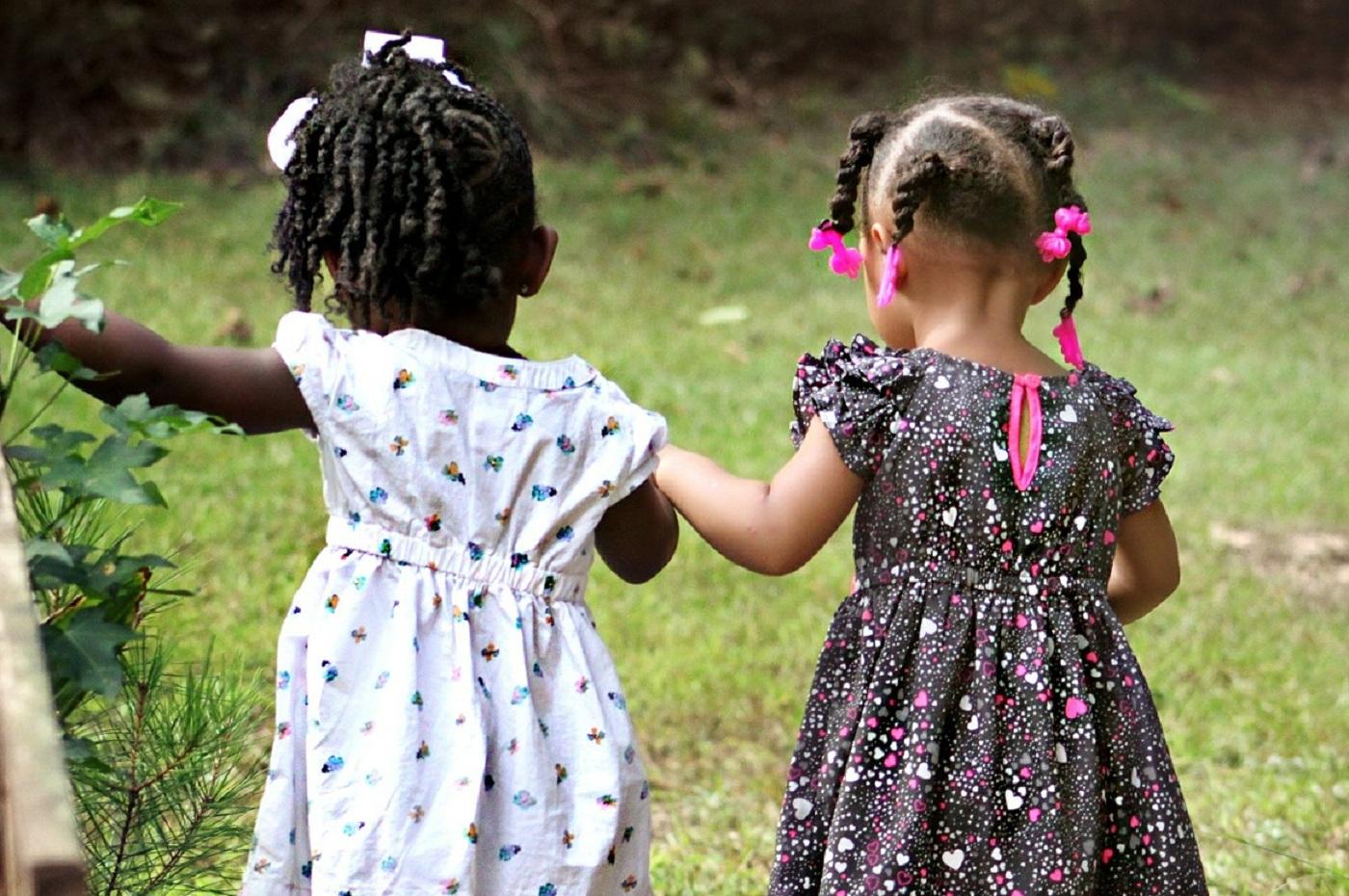 Las amistades que comienzan en la infancia son las más eficientes para la transmisión cultural en redes sociales humanas. Imagen: cherylholt. Fuente: Pixabay.