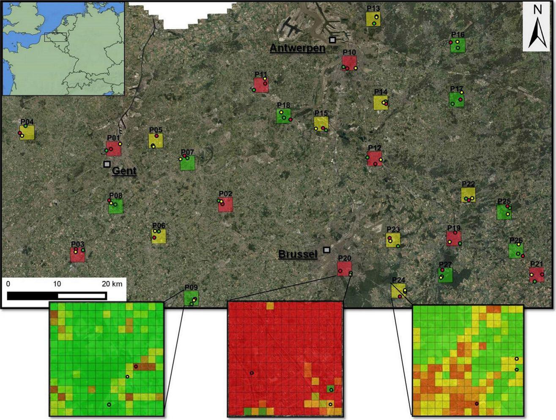 Mapa de las áreas belgas del estudio. Los recuadros indican la densidad de población de algunas ciudades. RBINS
