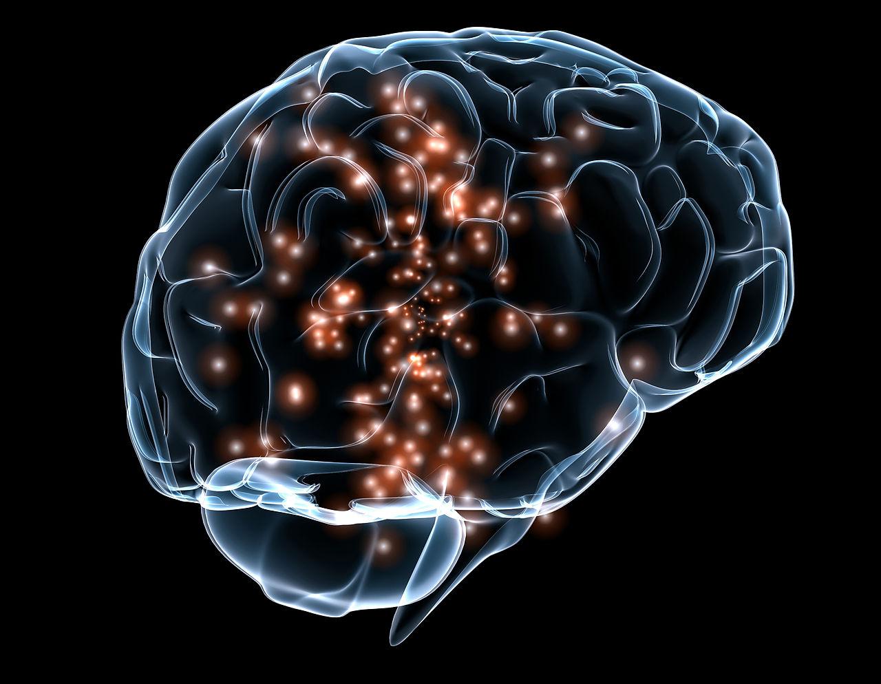 Ilustracion de la actividad neuronal en un cerebro humano. Fuente: Massachusetts General Hospital and Draper Labs
