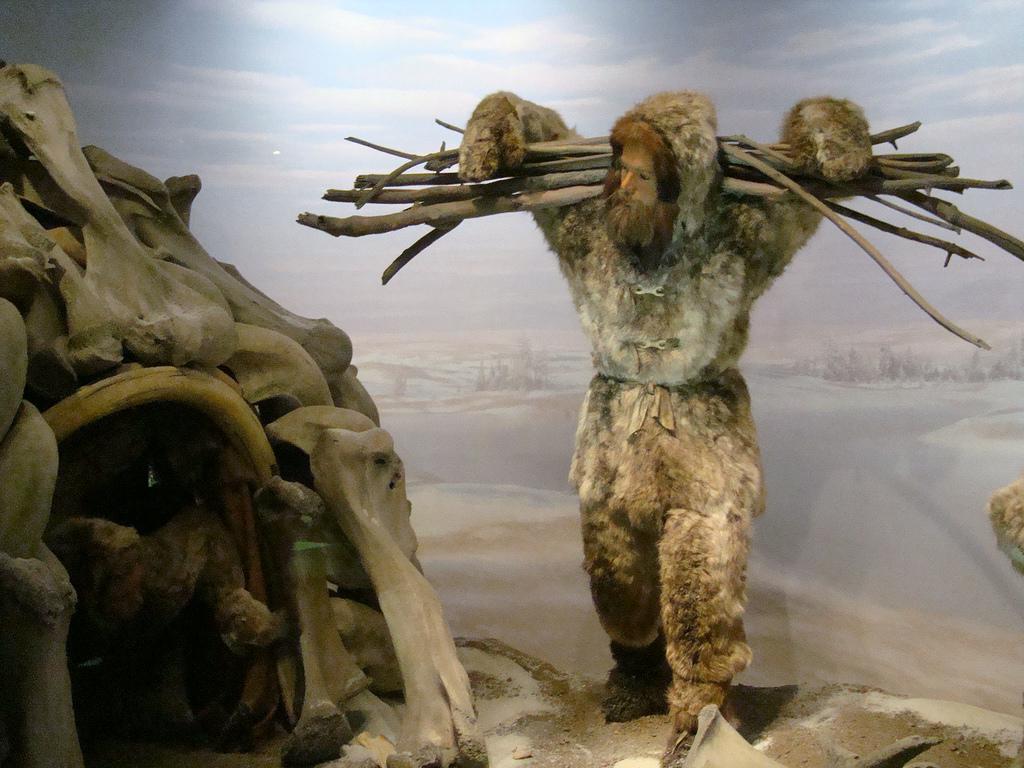 Homo Sapiens en el Museo de Historia Natural de Nueva York. Foto: Neil R