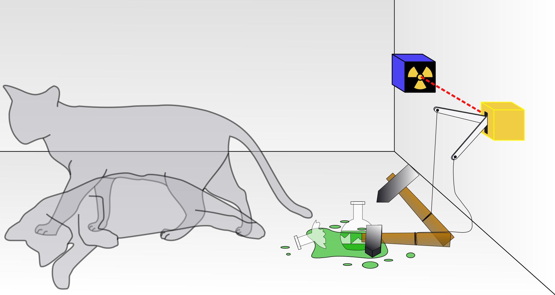 Ilustración del gato de Schrödinger. Dhatfield.
