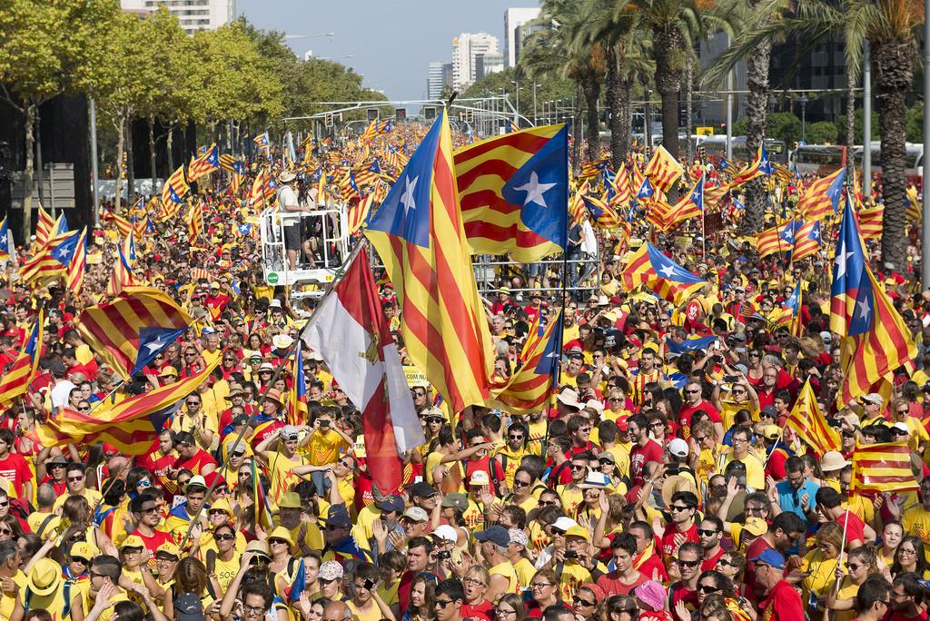 Foto: Jordi Ventura i Plans.  Assemblea.cat