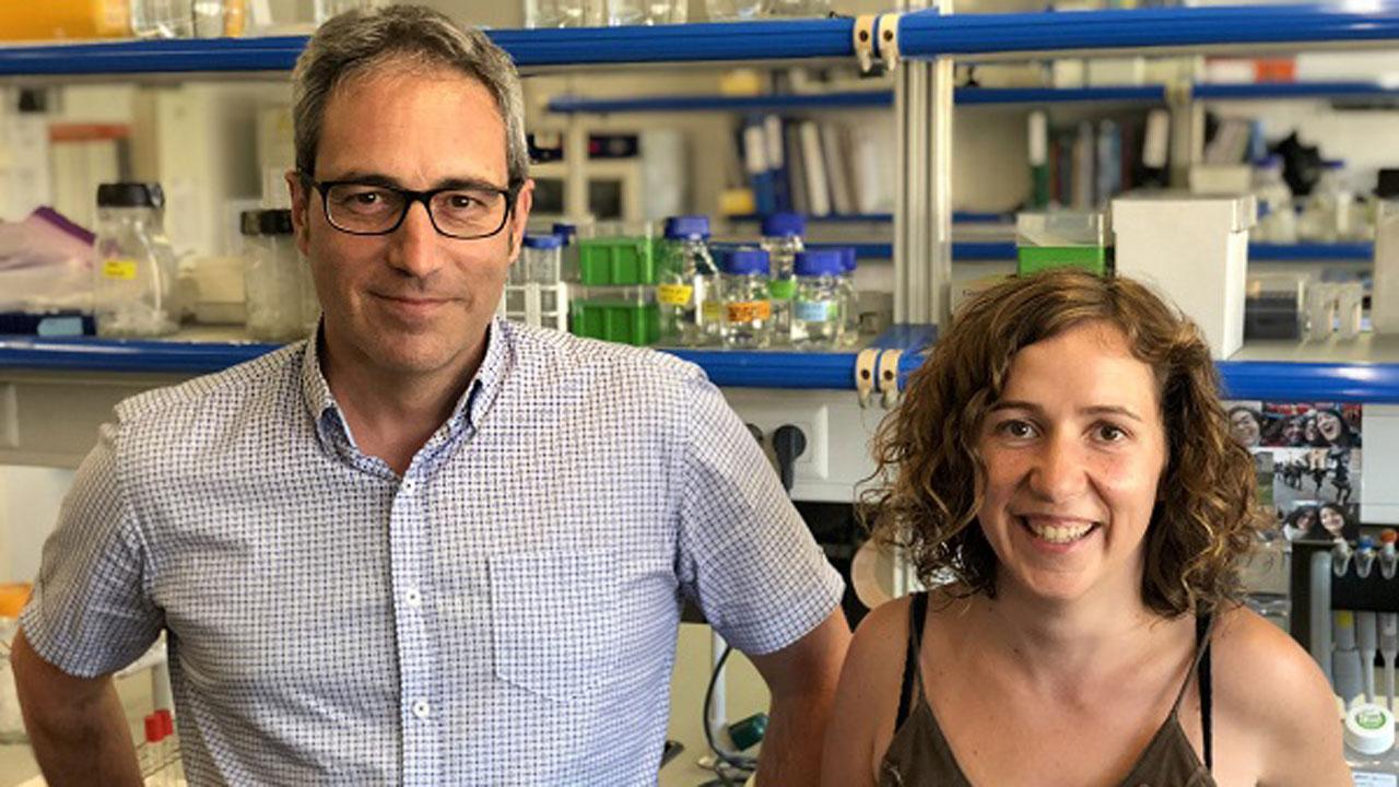 Los investigadores Bru Cormand y Noèlia Fernàndez Castillo, de la Facultad de Biología y el Instituto de Biomedicina de la UB (IBUB).
