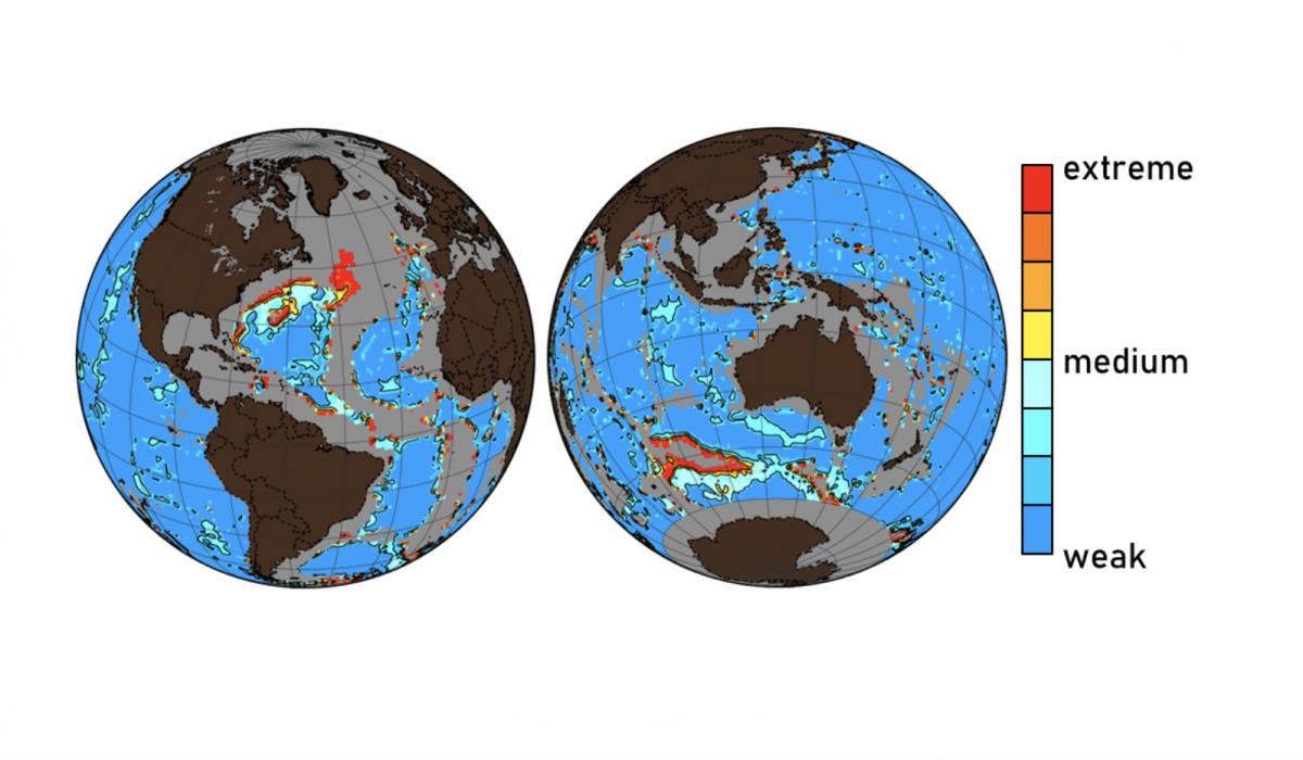 Mapa que muestra las áreas del fondo marino que han sido afectadas, en diversos grados, por la creciente acidificación de los océanos como resultado de las actividades humanas. Fuente: Universidad McGill. Click sobre la imagen para ampliar.