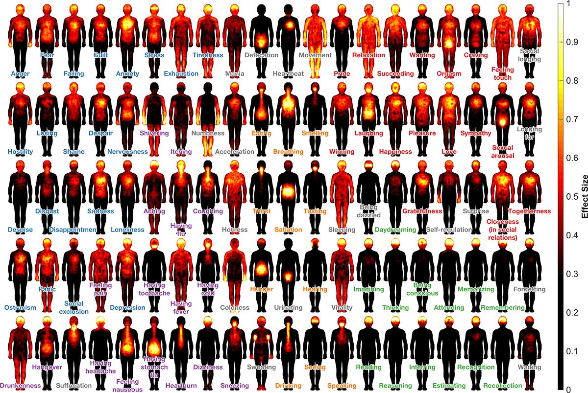 La huella que los sentimientos dejan en el cuerpo. Human Emotion Systems laboratory. Click sobre la imagen para ampliar.