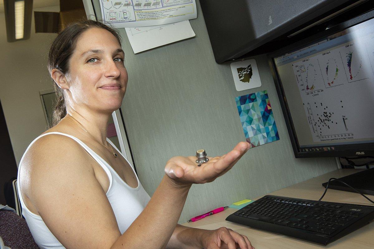 Emily Oby sostiene un electrodo que mide la actividad cerebral, representado en la pantalla de su ordenador. El éxito de este estudio podría ayudar a las personas que han sufrido lesiones cerebrales a recuperar habilidades como tocar el piano o practicar un deporte. Foto: Aimee Obidzinski / Universidad de Pittsburgh.