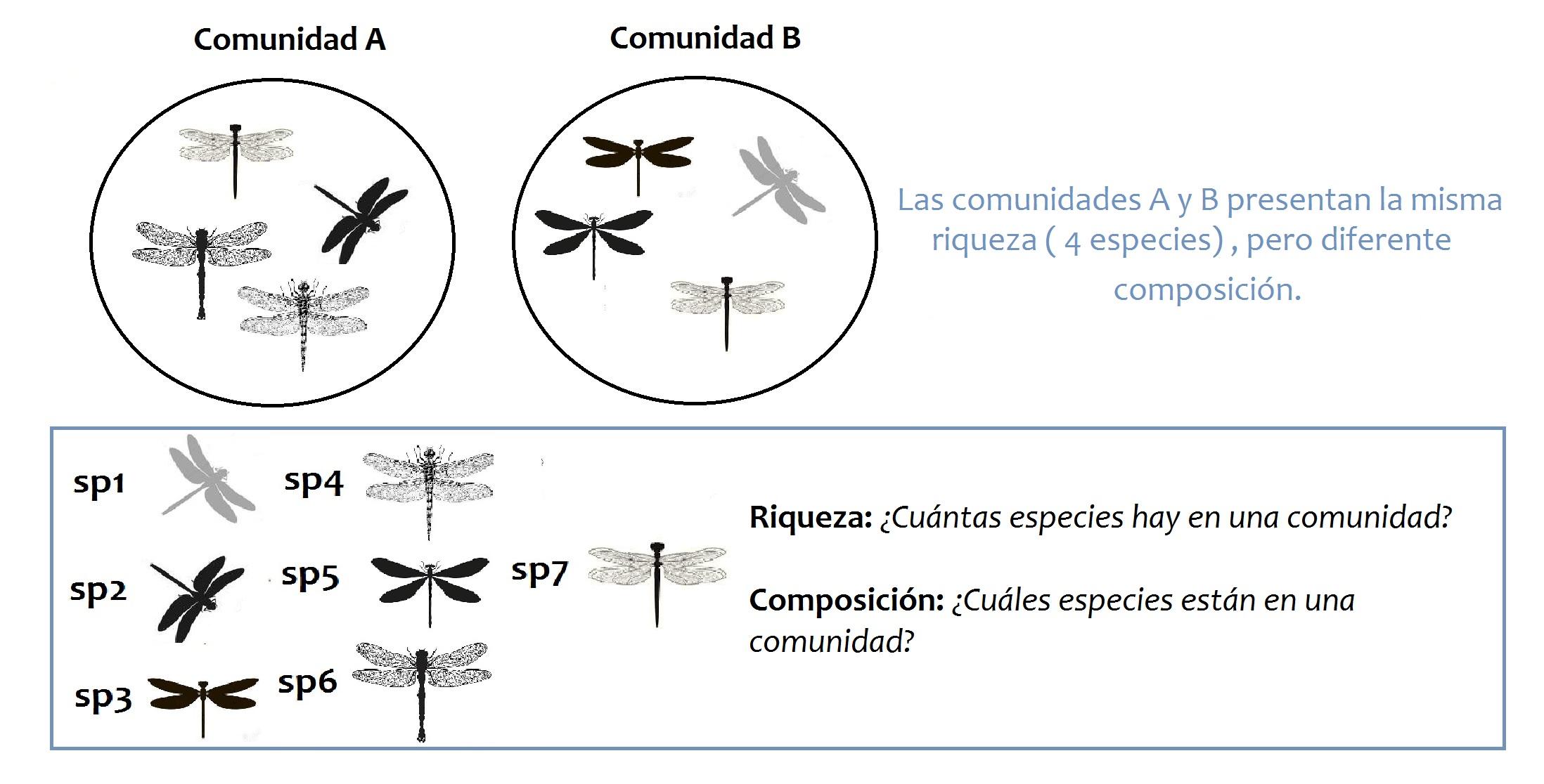 Figura 3. Riqueza y composición en comunidades biológicas