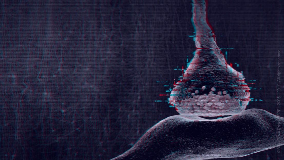 Para comunicarse, las neuronas tienen que enfrentarse a un ambiente ruidoso. © Proyecto Blue Brain / EPFL