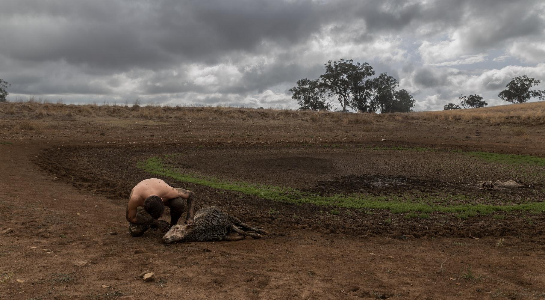 Sequía en Australia. Foto: jasper wilde.