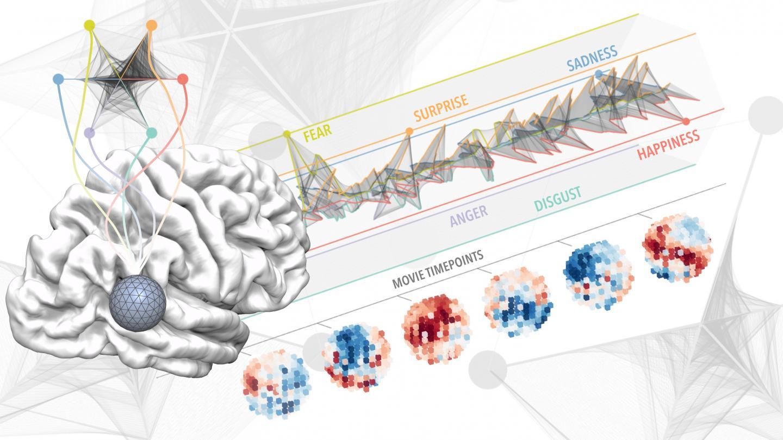 Ilustración de cómo se representan las emociones en el cerebro según los hallazgos del estudio. Crédito: Luca Cecchetti, IMT School for Advanced Studies Lucca.