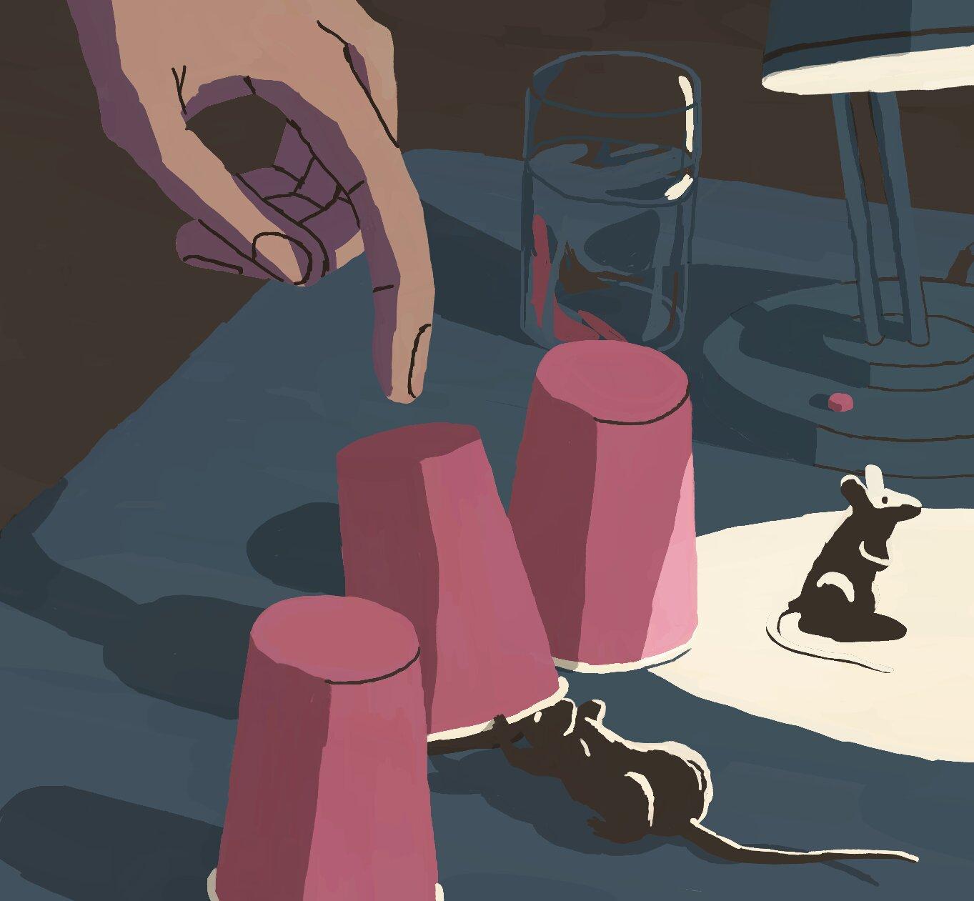 ¿Dónde está el premio? Gracias a sus habilidades de inferencia, es probable que los ratones lo encuentren como lo haríamos los humanos. Crédito: Diogo Matias.