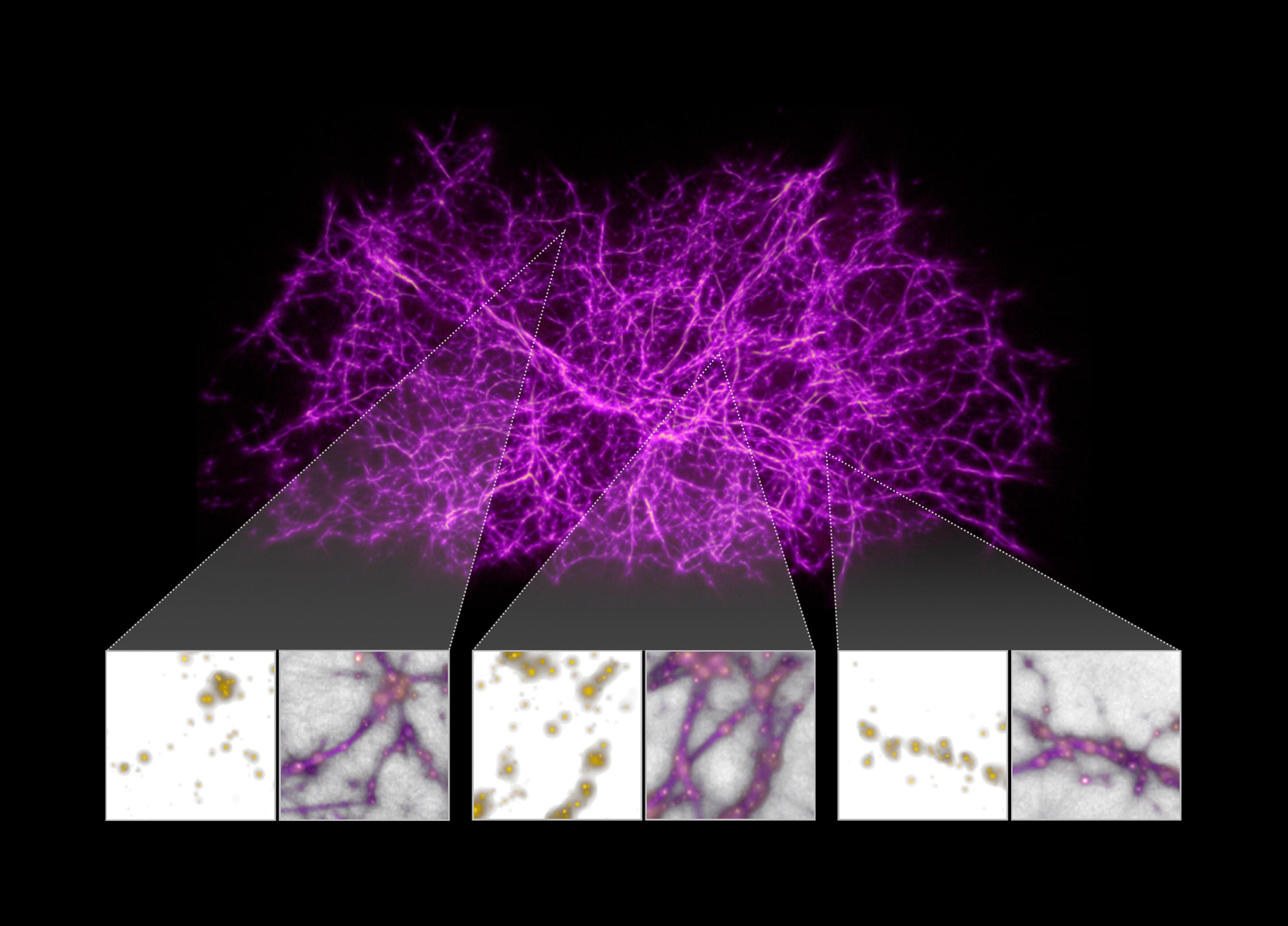 Mapa de la web cósmica generado a partir del algoritmo de la telaraña del moho mucilaginoso. Crédito: NASA, ESA y J. Burchett y O. Elek (UC Santa Cruz)