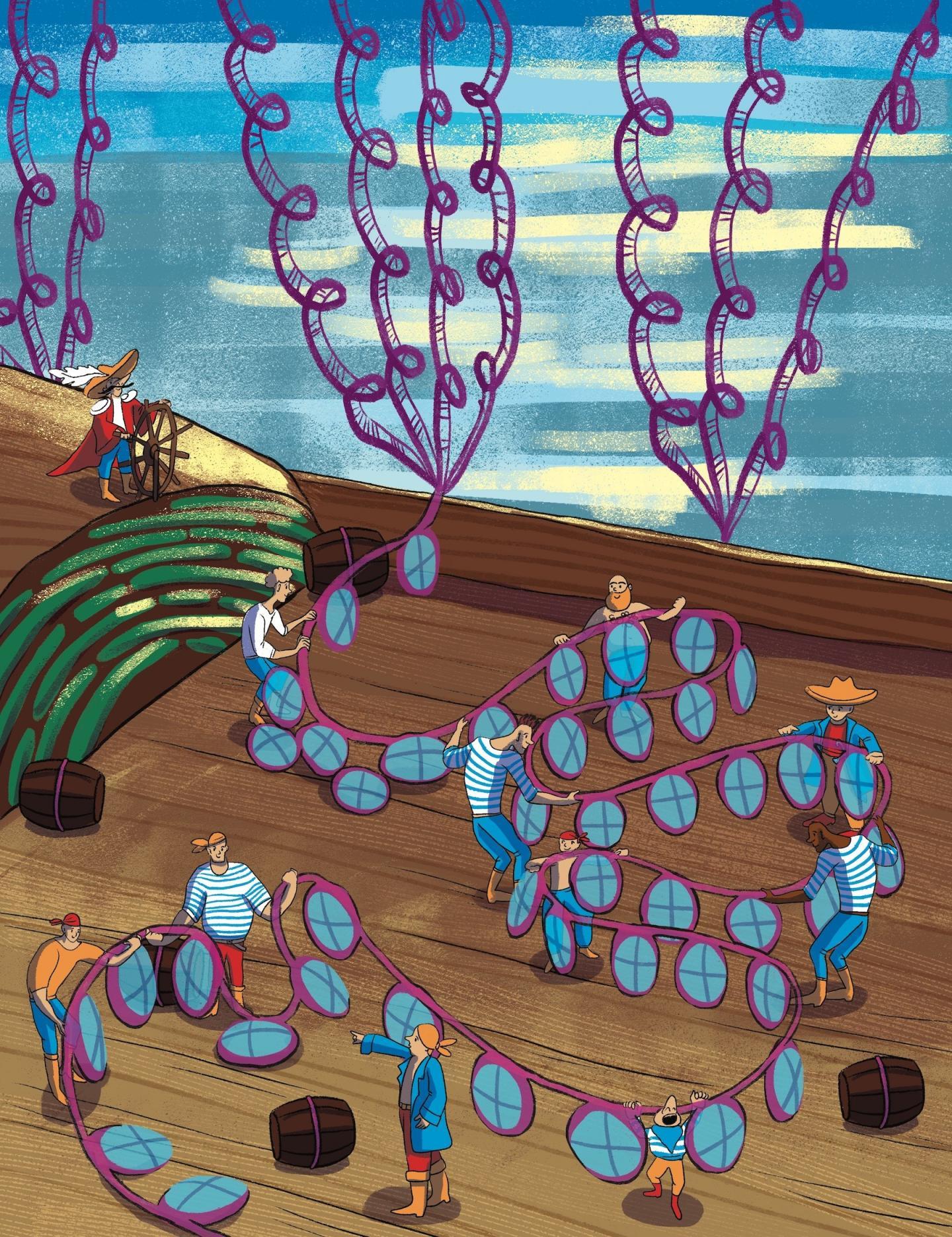 Al igual los marineros trabajan juntos con cuerdas para realizar tareas a bordo del barco, las proteínas trabajan con los cromosomas como una comunidad en el núcleo de una célula para llevar a cabo funciones celulares. Un algoritmo que imita al de Facebook ha identificado estas comunidades. Crédito: Ella Marushchenko.