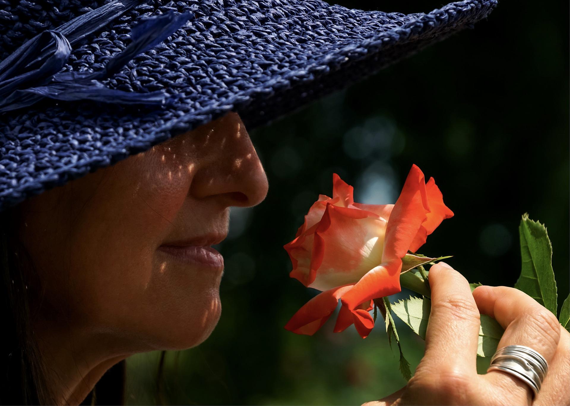 El olor altera los patrones neuronales de la memoria