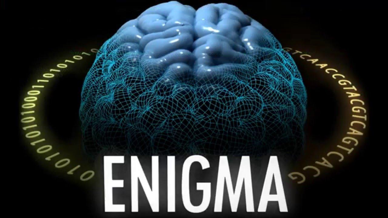 Imagen: Consorecio Enigma.