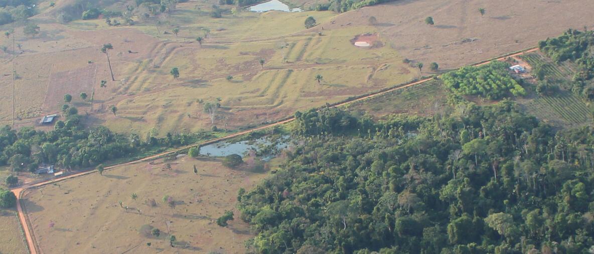 Vista aérea de uno de los sitios investigados llamado Tequinho, en la cuenca del Amazonas, en el que se aprecia uno de los geoglifos. Foto: Martti Pärssinen.