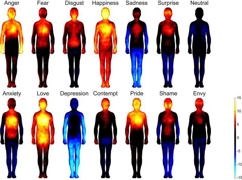 De izquierda a derecha y de arriba abajo, patrones de las emociones humanas en el cuerpo: ira, miedo, disgusto, felicidad, tristeza, sorpresa, neutralidad, ansiedad, amor, depresión, desprecio, orgullo, vergüenza y envidia. Fuente: Universidad de Aalto.