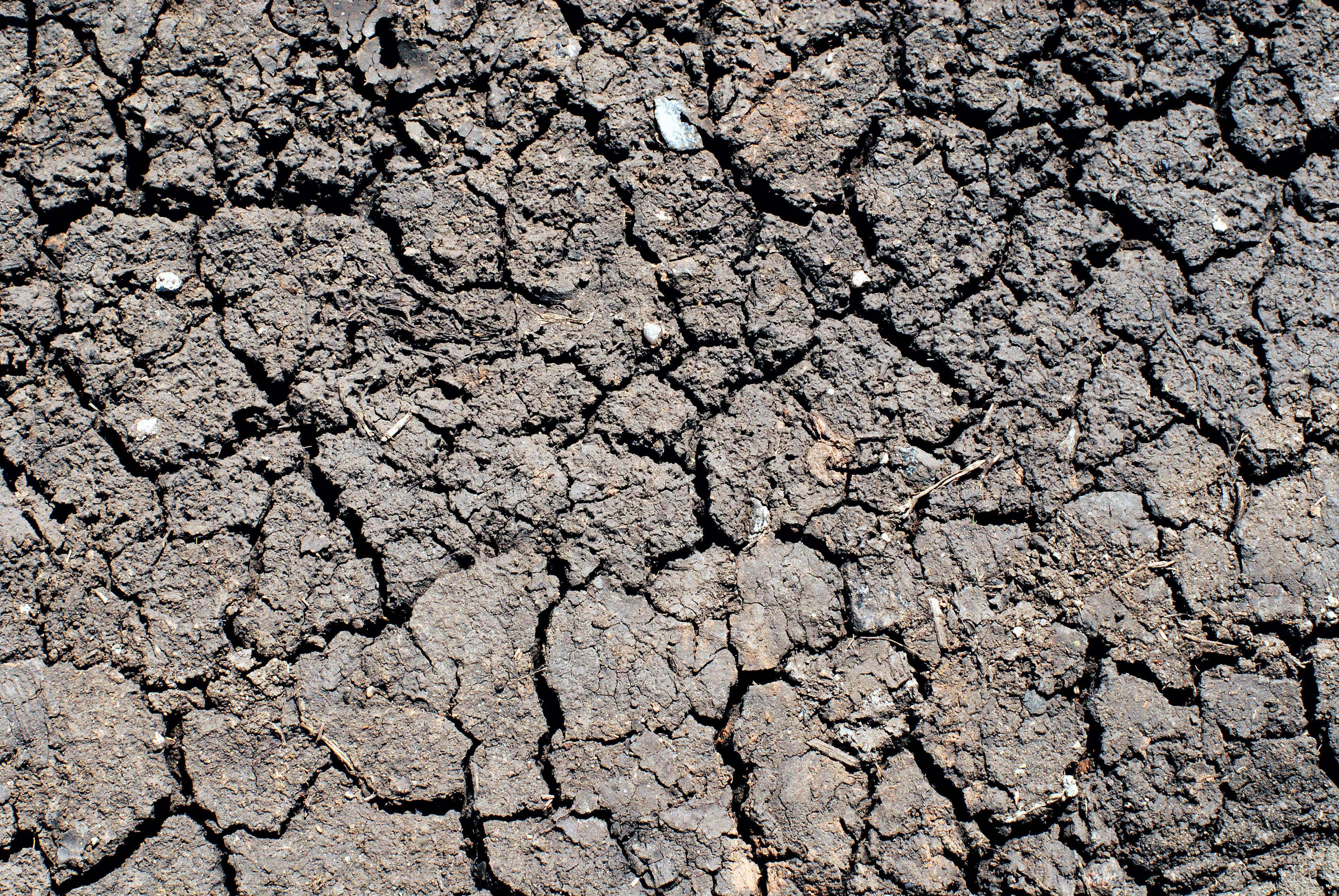 La sequía también supondría un gran problema en Europa en 2080 si no se frena el cambio climático, al alcanzar a unos 700.000 km2 por año –más que la superficie total de España–. Afectará a 140 millones de personas al año, alerta el estudio del JRC. Imagen: Aliaksandr Zabudzko. Fuente: PhotoXpress.