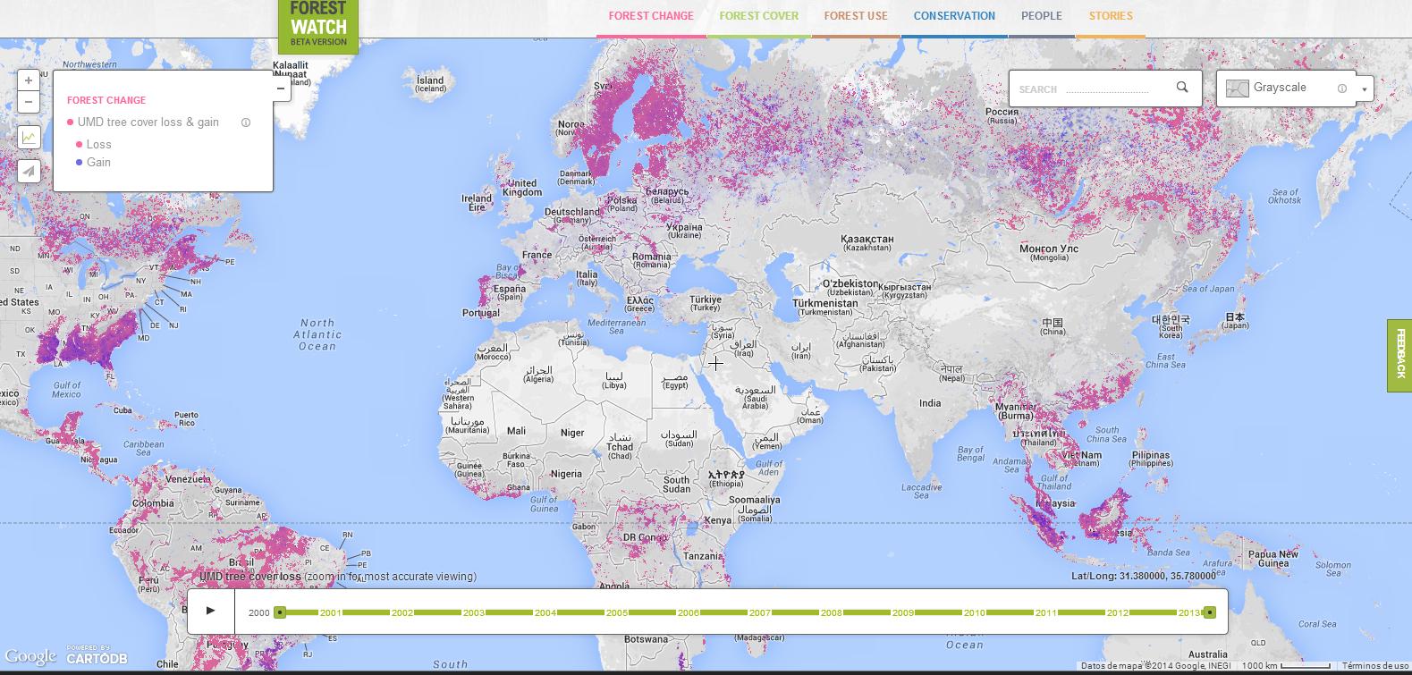 Mapa de Global Forest Watch. En fucsia, las pérdidas arbóreas, y en azul, las ganancias, a lo largo de los años. Fuente: Global Forest Watch.