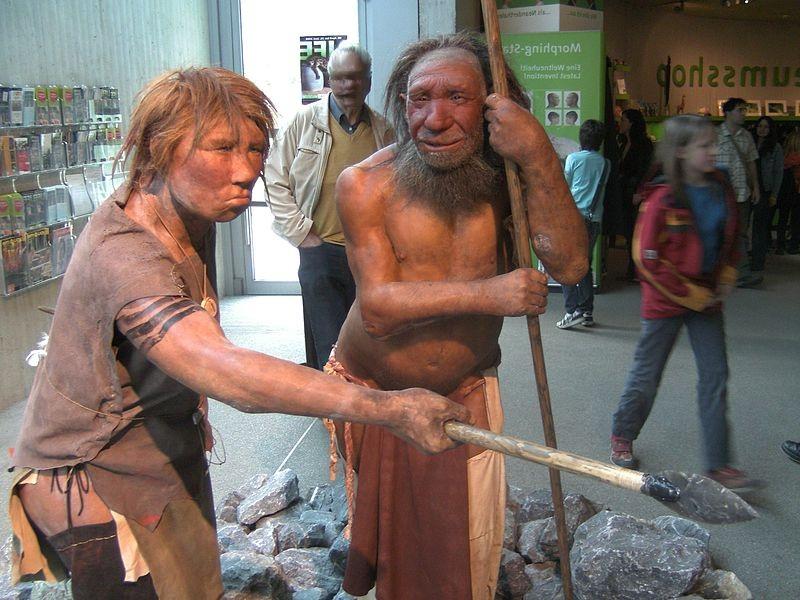 Reconstrucción de un hombre y de una mujer neandertales expuesta en el Museo Neandertal de Alemania. Fuente: Wikipedia.
