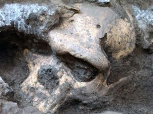 Rostro de un cráneo humano de hace 1.800.000 años. Fuente: Museo Nacional de Georgia.