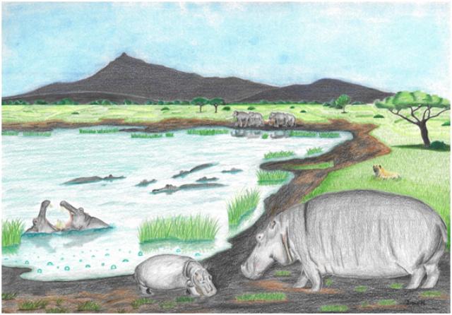 Spas en el Pleistoceno. Fuente: UMA.