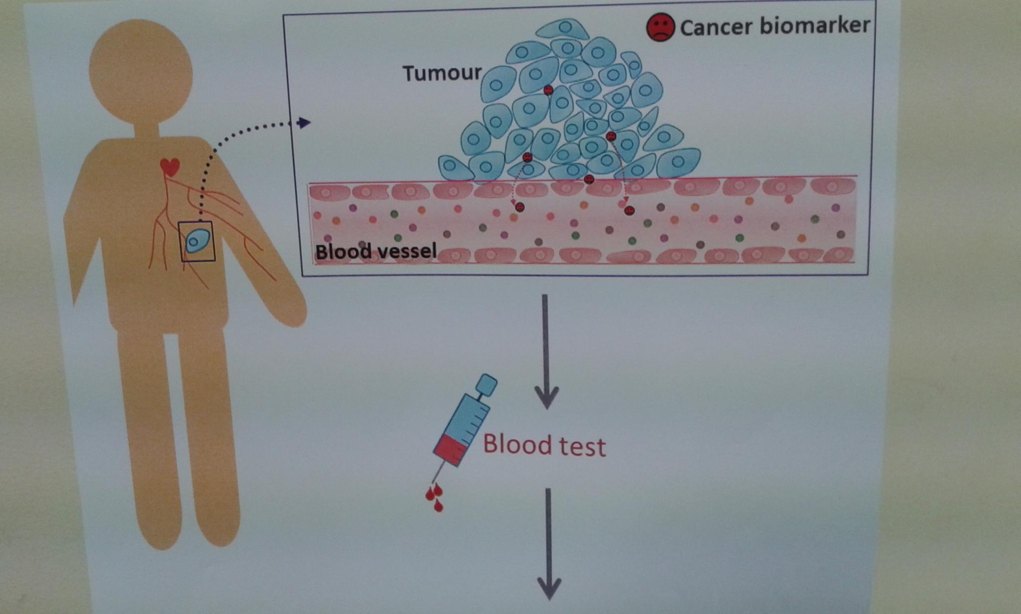 Gráfico del funcionamiento de los nanosensores biológicos. Fuente: CSIC.