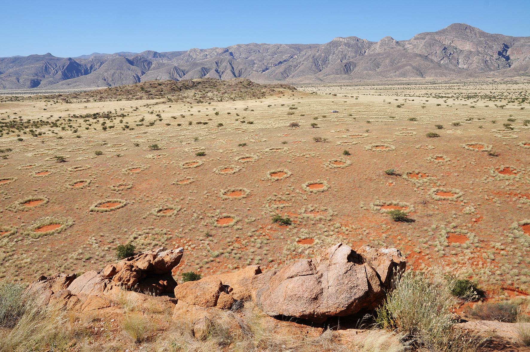 Vista aérea de los anillos de hadas de Namibia. Imagen: Stephan Getzin/UFZ. Fuente: Centro Helmholtz.