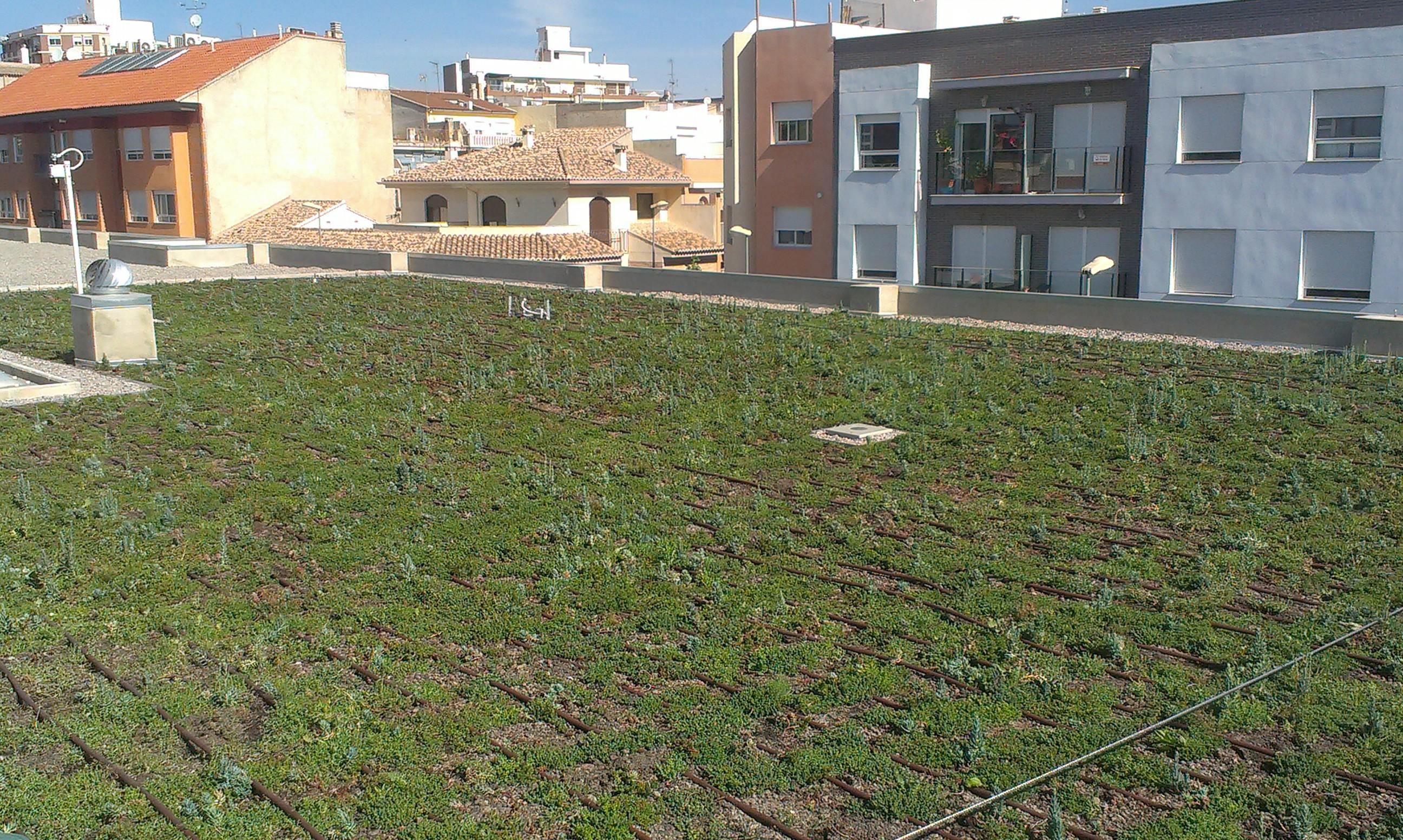 Cubierta vegetada de Benaguasil. Fuente: AlphaGalileo.