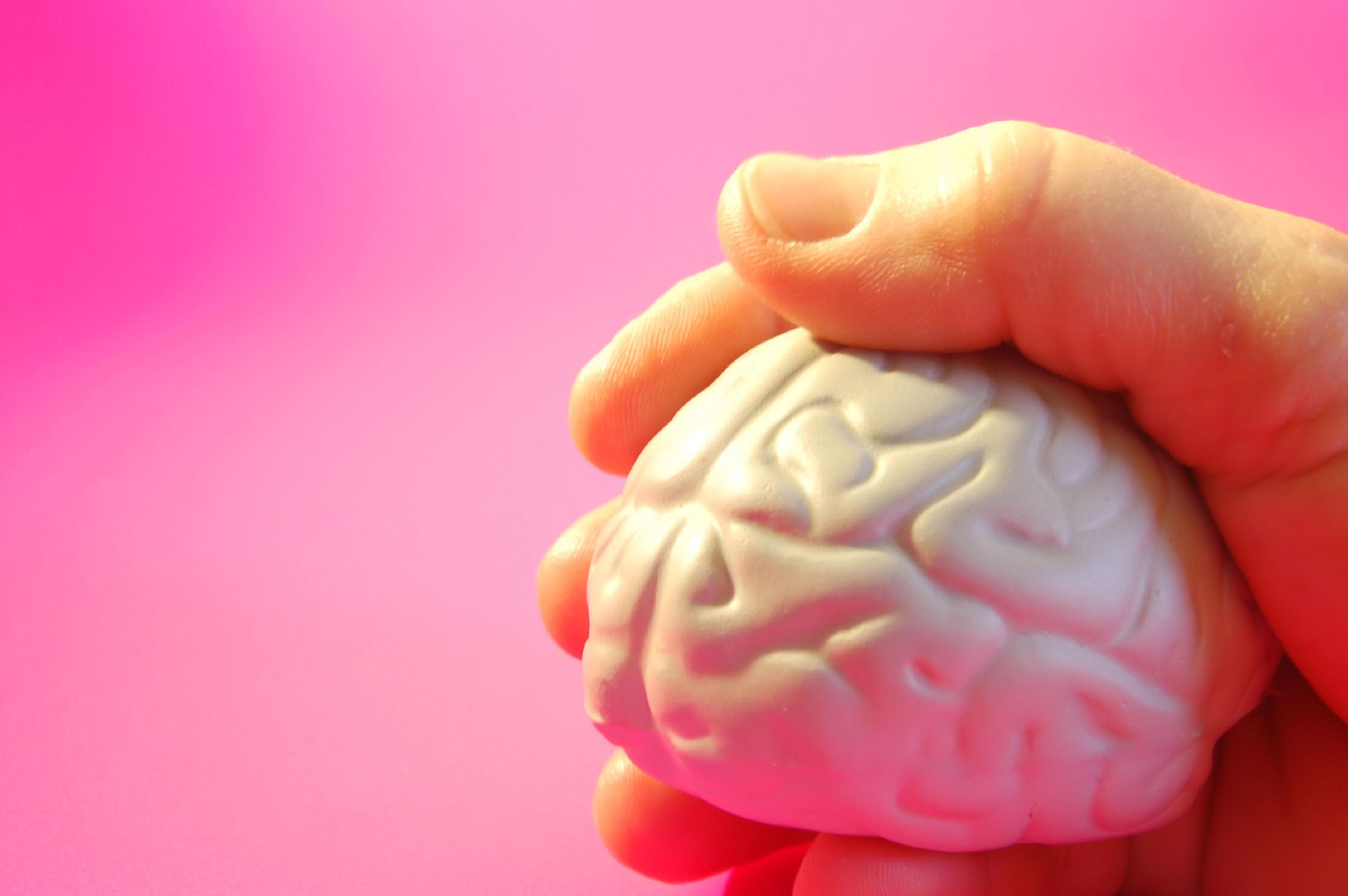 El cerebro de los jóvenes antisociales tiene menos materia gris. Imagen: Julia Freeman-Woolpert. Fuente: Free Images.