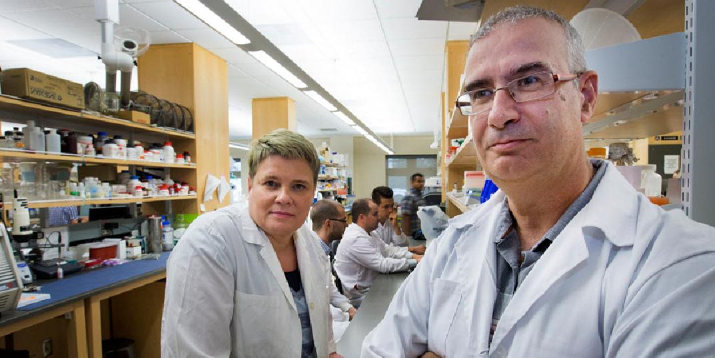 Héctor Caruncho junto a la investigadora Lisa Kalynchuk. Imagen: Gord Waldner, The StarPhoenix. Fuente: Universidad de Saskatchewan.