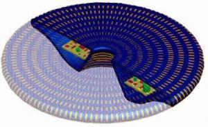 Reproducción del diseño del platillo ideado por el profesor Roy. Foto: Universidad de Florida.