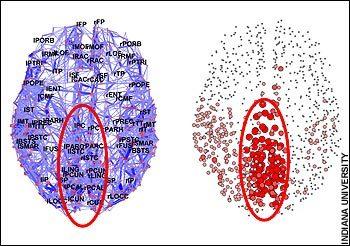 El núcleo central aparece rodeado en rojo. Fuente: Universidad de Indiana.