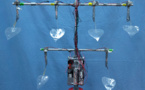 Diseñan un árbol artificial que genera electricidad