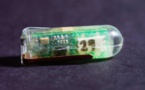 Aprovechan los ácidos del estómago para suministrar energía a pequeños sensores