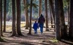 La separación de los padres afecta a la salud de los hijos cuando son adultos