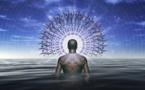 La Ayahuasca abre la percepción a la realidad detrás de la realidad