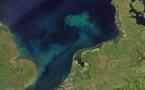Los océanos cambiarán de color por el cambio climático