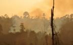 El calor extremo representa un riesgo inaceptable para la salud en todo el mundo