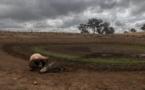 Suelo y atmósfera crearán una espiral de sequías este siglo