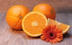 Comer naranjas en agosto y uvas en abril destruye al planeta
