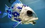 Crean un pez robot que mide la contaminación de los mares
